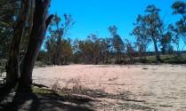 River bed - Central Australia