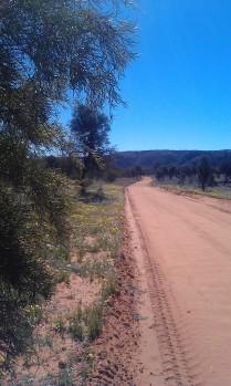 Owen Springs - Central Australia